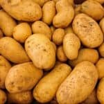 Syngenta's new seed treatment targets potato crops – CruiserMaxx Vibrance Potato