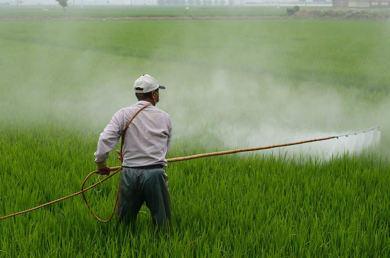 Glyphosate herbicid approved in the EU