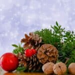 Christmas traditions with agricultural roots