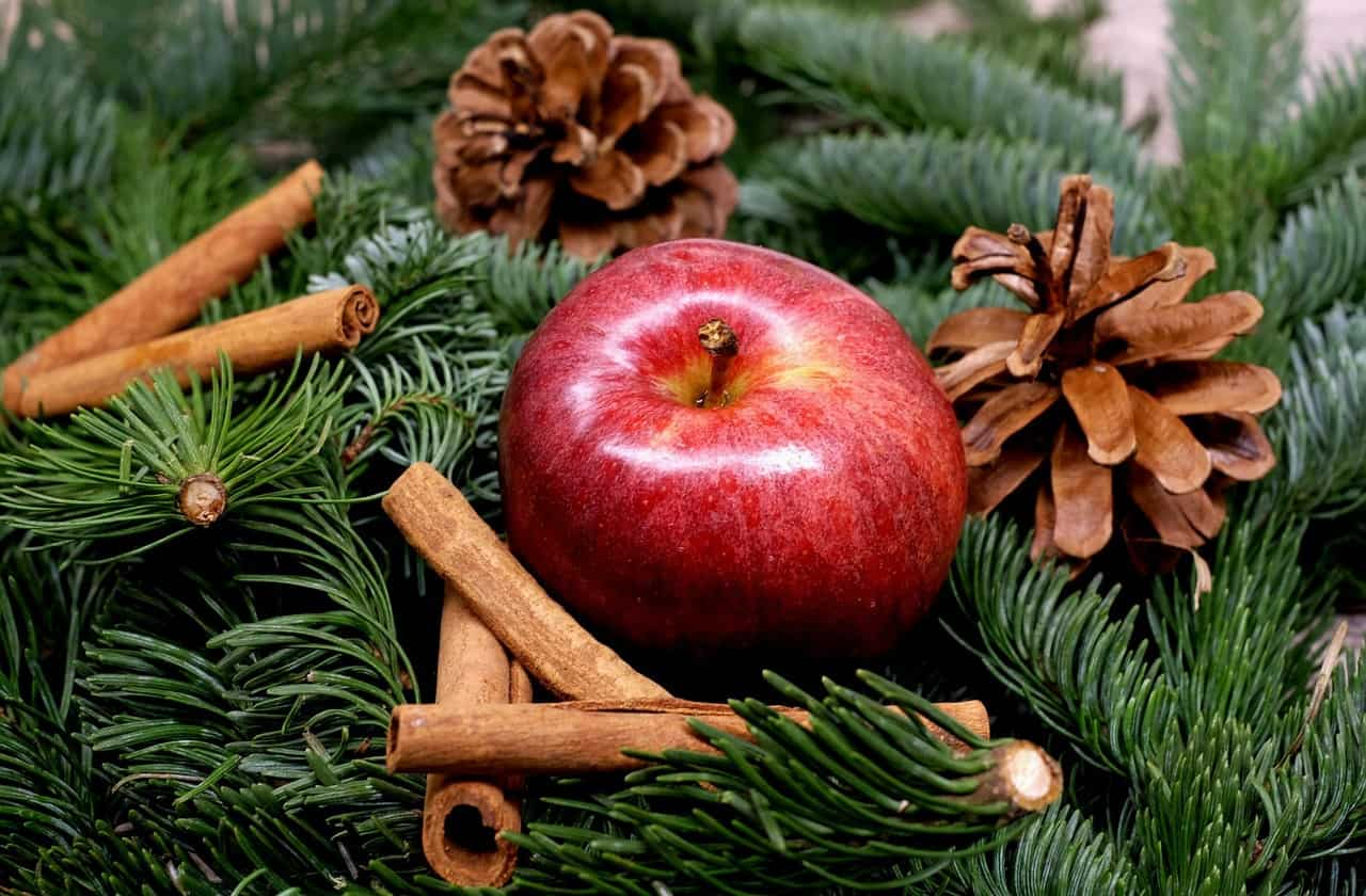 Apple Christmas traditions