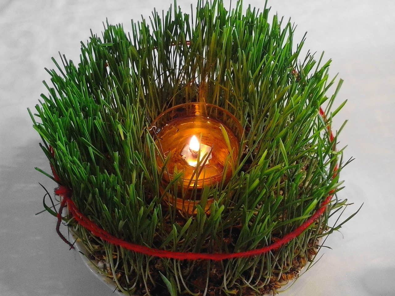 wheat Christmas decoration