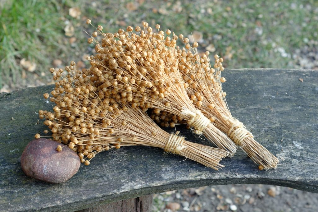 harvested flax