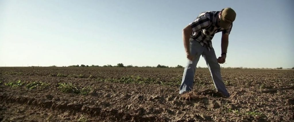 Farmland documentary