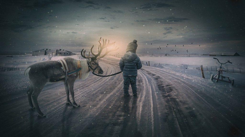 reindeer and people